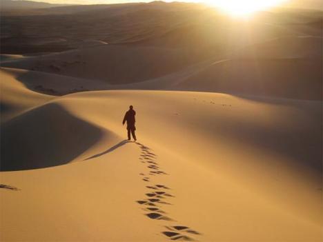 Desert Wanderings
